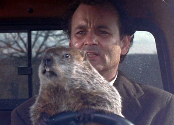 gal-groundhog-day-murray21